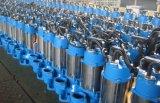 하수 오물 Pump (세륨을%s 가진 스테인리스 펌프)