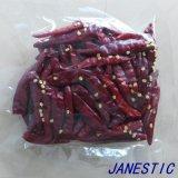 Getrockneter roter Chaotian Paprika von Sanying