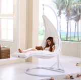 승진 Cheap Indoor와 Outdoor Swing Hanging Chair