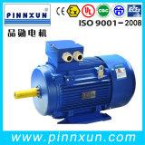 Motor eléctrico de la eficacia alta de la serie YE3 (IE3)