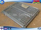 Muebles plegables de la jaula del acoplamiento del alambre/del metal para el almacenaje (SSW-F-006)