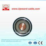Câble d'alimentation isolé par PVC de basse tension