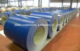 El color cubierto galvanizó la bobina de acero galvanizada /Prepainted de acero de las bobinas (PPGI/PPGL)/la bobina de acero galvanizada PPGI/Prepainted de los colores de Ral