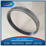 Gebildet in China Largetb NBR Oil Seal Big Size (540*590*25mm)
