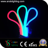 Tube au néon de corde extérieure de la décoration 13X25mm DEL