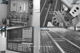 Маршрутизатор CNC Woodworking и вырезывание CNC гравировальный станок (Atc 1325)