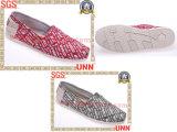 Chaussures classiques de toile de mode (SD6189)