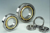 Китай Bearing Catalogue Tapered Roller Bearing для Bicycle Parts (NJ309EM/NU309)