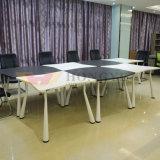 Mesa de reuniones rectangular de la oficina de negocio (HY-Q07, 08)