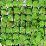 Giardino di plastica Leaf Artificial Fence di Artificial Grass per Home