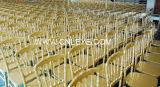 Cadeira de Napoleon do banquete (L-8)