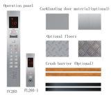 ISO9000를 가진 판매를 위한 FUJI 차 엘리베이터 자동차 상승