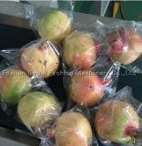 Широко используемое многофункциональное цена упаковывая машины мешка плодоовощ