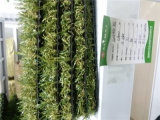 PE Monofilament Artificial Grass e Synthetic Grass