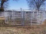 Het Systeem van het vee/van de Werf Sheep/Horse