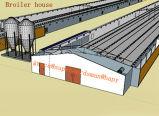 Автоматическое оборудование фермы цыпленка для дома бройлера