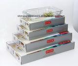 De Fenix Aangemaakte Plaat van /Fish van de Plaat van het Glas (Speciale Microgolf en Oven)