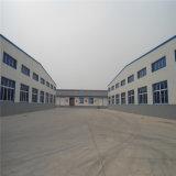 De lichte Geprefabriceerde Structuur van het Staal van de Vervaardiging voor Workshop en Pakhuis (ZY294)