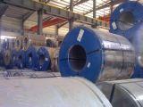 강철 코일이 최신 담궈진 건축재료 금속 강철에 의하여 직류 전기를 통했다