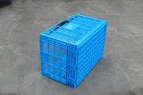600*400 het Vouwbare Plastic Krat van de reeks voor Groente en Fruit