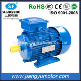 0.12 ~ 315kw Ye2 Series Three-Phase Asynchronous Induction Electric Motor with CE RoHS (112M-2)