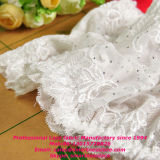 Elastisches Scalloped Lace mit Best Price