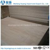 家具のための堅材のコアOkume/Bintangor商業合板