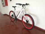 Hot Sale Torque Sensor Electric Bicycle Bike