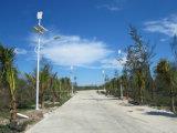 Generatore verticale di energia eolica per il piccolo sistema di rifornimento dell'alimentazione elettrica della famiglia