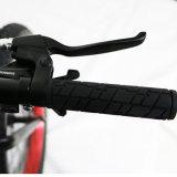 大きい力の高速Bafangの脂肪質のタイヤ4.0の雪Ebike