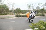 [150كّ] [200كّ] [350كّ] يتسابق درّاجة عرض مع تصميم باردة