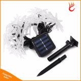 Solarweihnachtslichter 30 LED-Solarlibelle-feenhafte Zeichenkette-Lichter