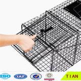 접을 수 있는 강철 저장 감금소 접히는 메시 또는 콘테이너 깔판 감금소