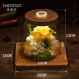Bottiglia luminosa di desiderio dei fiori freschi della costellazione di Ivenran per il presente e la decorazione creativi