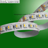 12V/24V 84LEDs/M 4in1 Rgbww/indicatore luminoso di striscia caldo di bianco LED