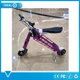 Motorino elettrico della bici elettrica leggera e potente di piegatura