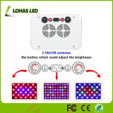 Veg / Bloom Panel LED Plant Grow Light avec interrupteurs