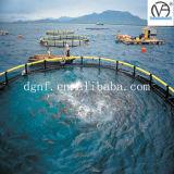 Jaulas de color salmón de los pescados de la acuacultura del olmo