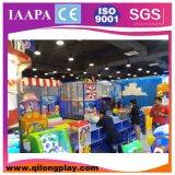 Generi differenti personalizzati di strumentazioni di divertimento (QL--088)