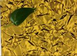 高品質のアルミニウム合成のパネルACP PVDFのコーティングの石パターンAlucoとらわれのPEまたはペットコーティング