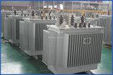 S11 de Regelende Transformator van niet-Escitation van de Reeks 20kv