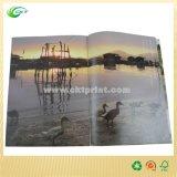 A4 barato / A5 CMYK impresión de libro brillante Art Paper Magazine (CKT-BK-410)