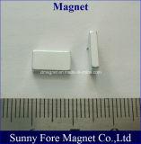 Magnet des Block-N42