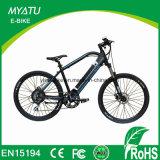 Mountain Motor Battery Bicicleta elétrica com controlador Lishui