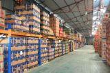Agente de carga confiable de los servicios de envío del almacén