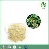 Выдержка /Astilbin 15%~98% Astilbin предохранения от печенки высокого качества национальная