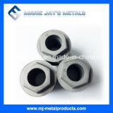 Qualität kundenspezifische Hartmetall-Düsen zu den verschiedenen Zwecken