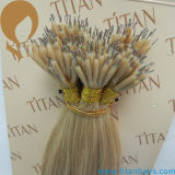 Double Drawn Brazilian Rmey Hair Nano Ring Hair Extensão (TT379)