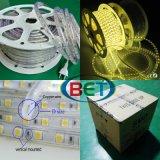 indicatore luminoso di striscia esterno ad alta tensione di 3000k LED 220V 110V 5050