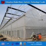 Hydroponics Stsyemの農業のマルチスパンの緩和されたガラスの温室